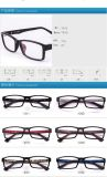High Quality Tr90 Frame Optical Eyewear Glasses