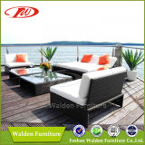 Garden Furniture/ Rattan Sofa Set (DH-8540)