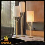 Stainless Steel Home Decoration Floor Lamps (KAF6116)