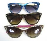 New Design Top Bar Engrave Cat Eye Special Acetate Sunglasses