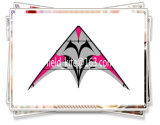 Beautiful Dual Line Delta Stunt Kites