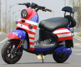 1000W Brushless Motor Electric Dirt Bike (EM-010)