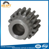 High Quality Industrial Precision Transmission Spur Gear