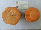 Sweet Potato Chinese