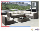 New Design Outdoor/Patio Furniture Sofa Set (TG-047)