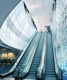 Indoor Escalator Outdoor Escalator Heavy Duty Safe Handrail Passenger