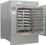 DZG Pulse Vacuum Sterilizer for Various Application