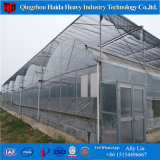 Low Cost Greenhouse China Professional Factory Hydroponic PC Greenhouse Systems