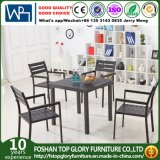 All Aluminum Tube Outdoor Furniture Garden Dining Table Sets (TG-6202)