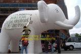 Large Customized Inflatable Elephant/Model Type Inflatable Animal Model