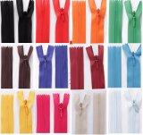 All Size Wholesale Invisibility Lace Nylon Zipper Colorful