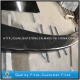Absolute Shanxi Black Granites Bench Tops for Garden Decoration