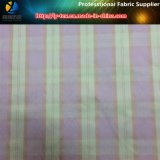 High Density Polyester Yarn Dyed Fabric, Popular Check in Japan