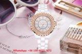Fashionable Pretty Ceramic Quartz Women′s Watch with Ceramic Trap Fs626