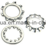 Toothed Lock Washer (DIN67987&J) (Factory)