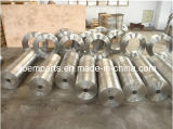 A182-F316 Forged/Forging Parts/Pipes/Tubes/Sleeves/Bushings (AISI 316, UNS S31600, 1.4401, SUS 316)