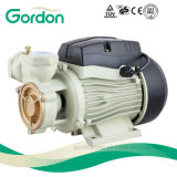 Gardon Electric Brass Impeller Peripheral Water Pump with Steel Casting