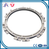 High Precision OEM Custom High Pressure Aluminum Die Casting (SYD0062)