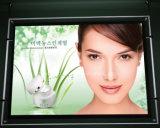 Window Display LED Crystal Light Box (CSH01-A2L-04)