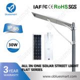 Bluesmart Solar Fence Light Solar Powered Street Light for Africa