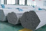 Supplier of Stainless Steel Tube