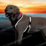 LED 'flash' Soft Dog Harness (YD011)