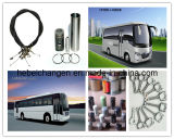 China Bus Auto Truck Engine Parts