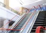 Commerical Home Outdoor Escalator with Competitive Cost