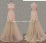 Halter Applique Fashion Ladies Gowns Tulle Evening Formal Dresses Z5011
