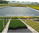 Black PP Woven Weed Control Mat