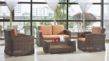 Garden/Patio Outdoor Furniture Rattan Sofa Set (BZ-R010)