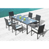 Rattan Furniture Dining Set for Outdoor with Steel Pipe (1048)