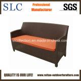 Rattan Sofa/Outdoor Furniture/Three Seat Sofa (SC-B1078-2)