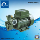 Kf-1 Electric Water Pump for Clean Water 0.37kw/0.5HP 1 Inch Outelet