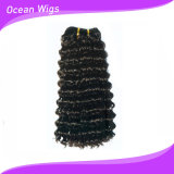 Hot Sale Beautiful Synthetic Hair (SE-003)
