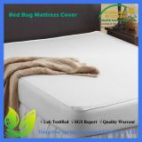 Queen Size Bed Bug Proof Zippered Mattress Cover