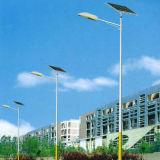 Solar Street Light with Solar Panel
