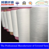 Single Covered Yarn with The Spec 1170/24f (S/Z) EL+Ny