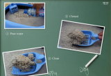 Bentonite Cat Litter