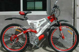 Bicycle (WT-2675D)