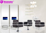 Styling Chair, Salon Chair, Barber Chair, Hairdressing Chair (Package NP1081)