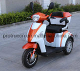 Electric Tricycle with Steel Frame