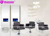 Styling Chair, Salon Chair, Barber Chair, Hairdressing Chair (Package NP1072)