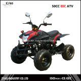Street Legal ATV for Sale 50cc EEC Quad
