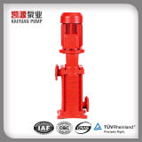 Xbd-LG Vertical Multistage Centrifugal Pump Jockey Pump
