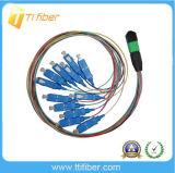 Sc-MPO Multimode 50/125 Fiber Jumper Cables