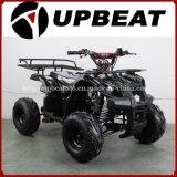 Upbeat Motorcycle 110cc ATV 125cc ATV 90cc ATV Kids ATV