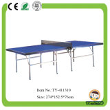International Standard Adult Indoor Table Tennis (TY-10907)