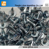 Blue White Galvanized Modified Truss Head Self Drilling Screws