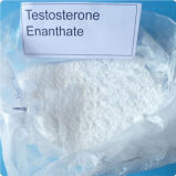 Anabolic Steroids Testosterone Enanthate for Effective Muscles Building